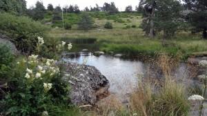 Terre de Peyre - La Rimeize calme